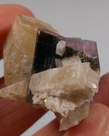 Dark green tourmaline crystals with lavender/pink caps - in matrix