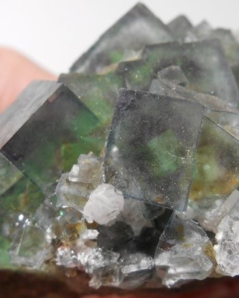 Beautiful color-zoned fluorite cubes on matrix