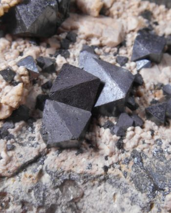 Magnetite crystals on matrix